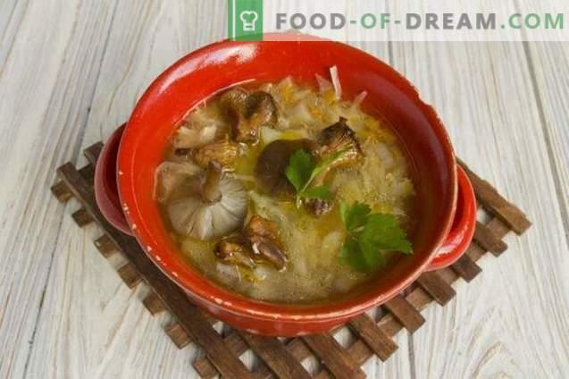 Гъбена зеле супа със зеле