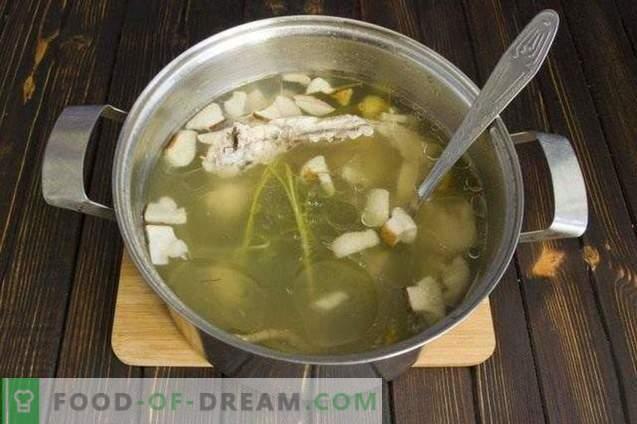 Гъбена крем супа със сметана и тиквички