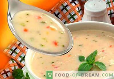 Zuppe per bambini - ricette collaudate. Come cucinare correttamente e gustose zuppe per bambini.