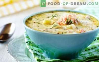 Fish soup in a slow cooker - nowhere easier! Recipes for different fish soups in a slow cooker with canned food, cereals, vegetables