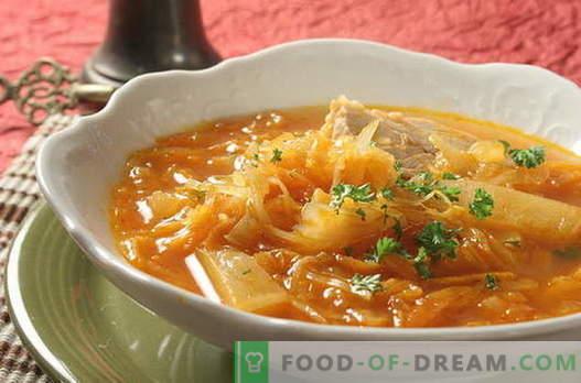 Зелена супа - най-добрите рецепти. Как правилно и вкусно да се готви супа от зеле.
