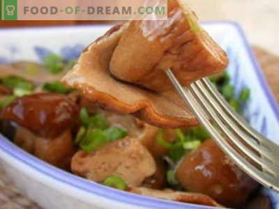 Мариновани гъби - най-добрите рецепти. Как правилно и вкусно да готвя мариновани гъби.