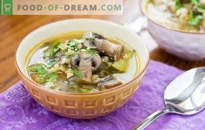 Gobova juha z biserno ječmenom je okusna in enostavna za kuhanje. Izvirni recepti gobove juhe z bisernim ječmenom