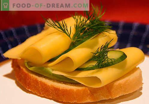 Käse-Sandwiches sind die besten Rezepte. Wie schnell und lecker Brötchen mit Käse kochen.