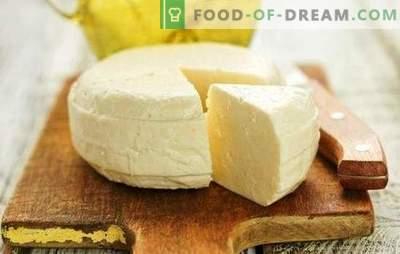 Suluguni fait maison - une recette du cœur pour les amateurs de fabrication du fromage. Comment faire du fromage suluguni à la maison?