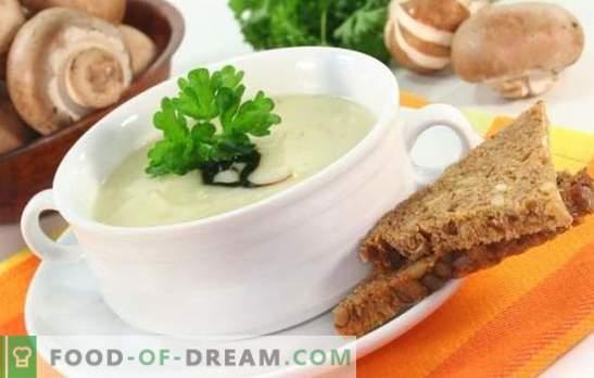 Grybų sriuba su lydytu sūriu - nepageidaujamai pamirštas patiekalas! Geriausi grybų sriubos su lydytu sūriu receptai