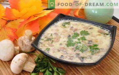 Изключително проста и уникално вкусна - гъбена супа с картофи. Подбор на супи от печурки с картофи