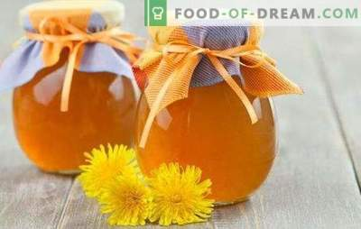 Сироп от глухарче - приготвяне на витамини! Рецепти за здравословен сироп от глухарче със захар и лимон, подправки, джинджифил, мед