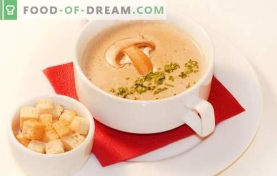 Пюре от гъбена супа - деликатна версия на любимото ви ястие. Най-добрите рецепти на гъбена сметана: сметана, сирене, ориз, ракия, скариди