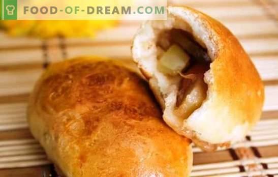 Дрожди с ябълки във фурната - красиви! Рецепти за тесто и пълнежи за пайове с ябълки във фурната