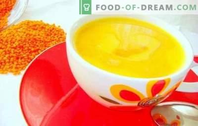 ¡La salsa de limón es una adición fragante! Recetas sencillas para salsas de limón para carnes, pescados, verduras, platos dulces y ensaladas