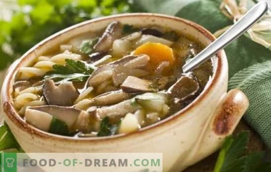 Супа от печурки - лесно и просто! Рецепти за гъбена супа с пиле, елда, макаронени изделия и сирене