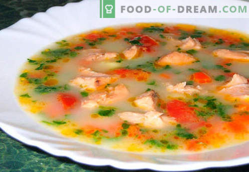 Супа от сьомга - най-добрите рецепти. Как правилно и вкусно да се готви супа от сьомга.