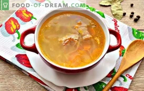 Прости рецепти богата супа от зеле, приготвена от прясно зеле със свинско месо. Готвене на най-руската супа - супа от прясно зеле със свинско