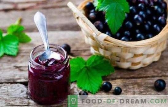 Желязото от касис е храна за здраве. Как да готвя вкусно и здравословно касис желе с цитруси, цариградско грозде, малина