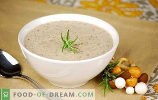 Гъбена крем супа - популярни рецепти. Как да си направим гъбена крем супа в бавен котлон, със сметана или със сирене