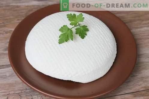 Queso o queso feta en casa. Cómo hacer queso casero es sabroso y barato.