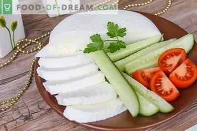 Queijo ou queijo feta em casa. Como fazer queijo caseiro é saboroso e barato.