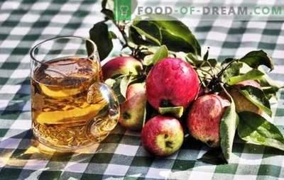 Осъществяване на домашен ябълков сайдер - натурален продукт! Как да приготвим суровини за ябълков сайдер у дома