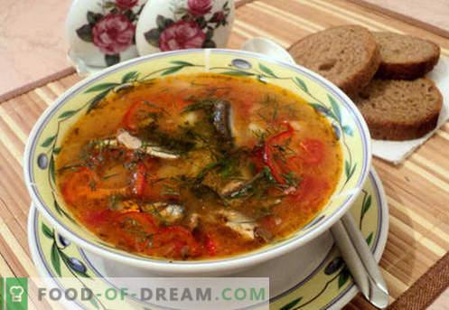 Супи от доматена цаца - доказани рецепти. Как правилно и вкусно да се готви супа от доматена цаца.