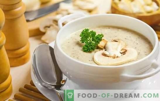 Ароматни шампионски супи: рецепти стъпка по стъпка. Пригответе обикновен пълнеж и европейски кремави гъбени супи (стъпка по стъпка)