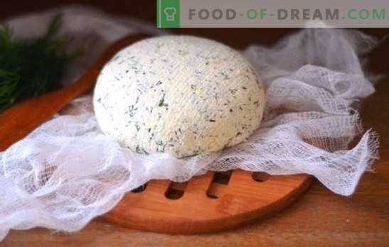 Кефирено сирене у дома - вкусно, икономично, здраво. Как да си направим различни видове сирене от кефир у дома