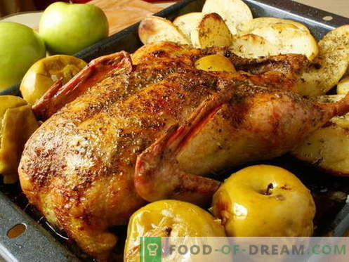 Патица с ябълки - най-добрите рецепти. Как правилно и вкусно да се готви патица с ябълки.