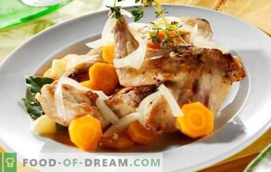 Заек фрикасе - крехко месо с ароматен сос. Най-добрите рецепти заек fricassee със сметана, сметана, мляко
