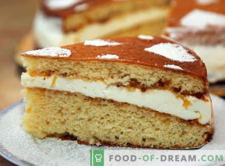 Бисквити - най-добрите рецепти. Как да правилно и вкусно готви гъба торта.