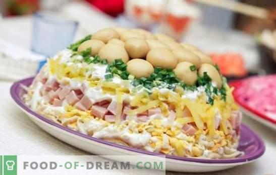 Слоеста салата с шунка - предястие за всички поводи. Рецепти за бутер с шунка, картофи, сини сливи, чипс