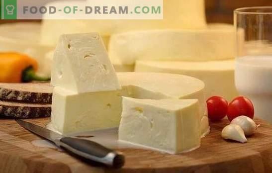 Как бързо да се готви сулугуни у дома: рецептата за младо бяло сирене. Готвене на нежно сирене сулугуни у дома