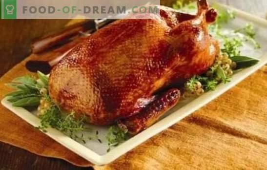 Домашно приготвена патица в пещта: стъпка по стъпка рецепти на червена, сочна и ароматна птица. Готвене на домашна патица във фурната с рецепти стъпка по стъпка