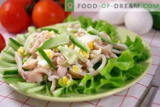 Ensaladas de calamar - las mejores recetas. Cómo cocinar correctamente y sabroso cocinar ensaladas de calamar.