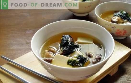 Суп с гъби от стриди - ароматно ястие за обяд по всяко време на годината. Най-добрите рецепти на гъбена супа от стриди с пилешко месо, сирене и др.