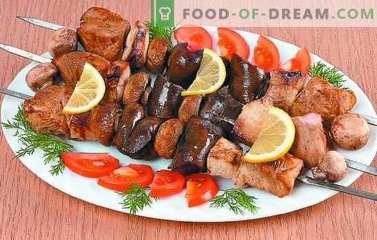 Кебап от Турция: рецепти за крехко месо. Тайните на марината за кебап от пуйка: пикантен, бърз, кефир, вино