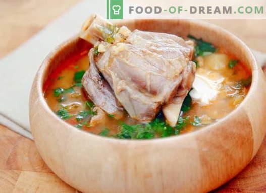 Супа от овесени ядки - най-добрите рецепти. Как правилно и вкусно да се готви агнешка супа.