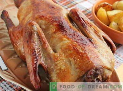 Патица, печена във фурната - най-добрите рецепти. Как да готвя патица правилно във фурната.