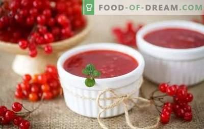 Viburnum желе е и лекување и лек. Готвење желе од вибурнум како десерт и за зима, без камења и без готвење, со тиква и мед
