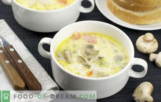 Крем от гъбена супа: класически и оригинален. Леки рецепти за супа от гъби за бизнес и домашна вечеря