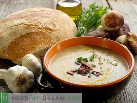 Гъбена супа - най-добрите рецепти. Как правилно и вкусно да се готви гъбена супа.