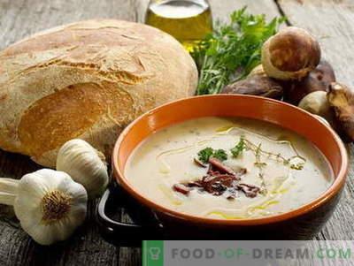 Seenesupp - parimad retseptid. Kuidas korralikult ja maitsev kokk seene supp.