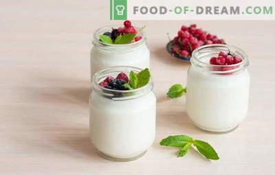 Hoe yoghurt thuis maken: technologie. Yoghurtrecepten thuis: in een yoghurtmaker, thermoskan, steelpan