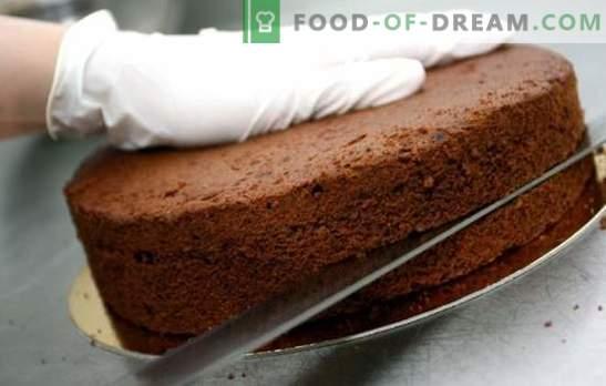Торти за торти - прости рецепти от бисквити, въздушно и бадемо тесто. Обикновени торти за торти: тайни за готвене