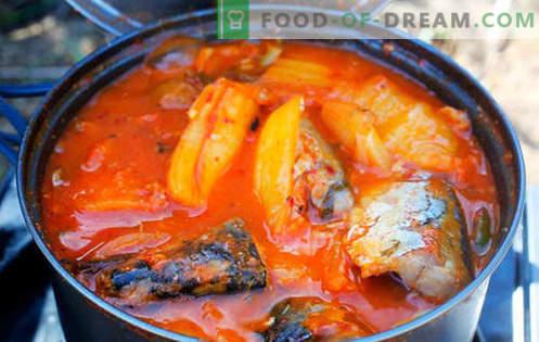 Задушено скумрия - най-добрите рецепти. Как да правилно и вкусно готви задушено скумрия.