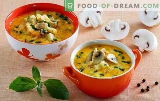 Супа с шампиони и сирене - поглезете семейството си! Подбор на най-добрите рецепти за супа с гъби и топено сирене