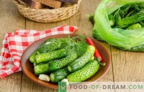 Мариновани краставици: бързи рецепти с и без туршия. В буркан, чанта, тенджера - прясно осолени краставици за бързи рецепти