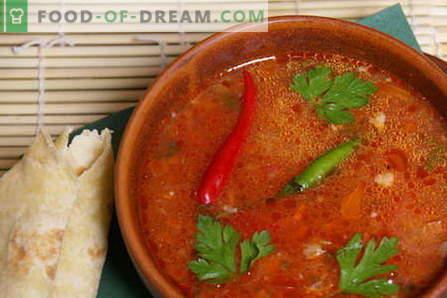 Говеждо харчо - най-добрите рецепти. Как да правилно и вкусно приготвени kharcho говеждо месо.
