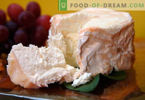 Домашно сирене - най-добрите рецепти. Как да правилно и вкусно готвя сирене от извара или мляко у дома.