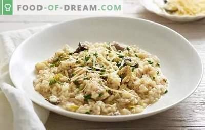 Класически ризото - популярно ястие от Италия. Рецепти за класическо ризото с гъби, пиле, зеленчуци и морски дарове