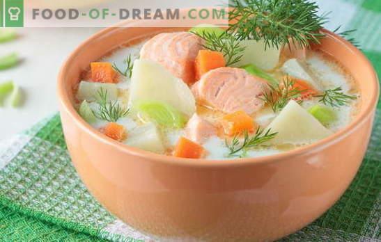 Червена рибена супа - като за възрастни и деца. Стъпки по стъпка рецепти за вкусни червени рибни супи: сьомга, сьомга, розова сьомга